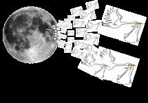 Nacimientos y las fases de la Luna, ¿Mito o realidad? Resultados de un pequeño estudio en Navarra.